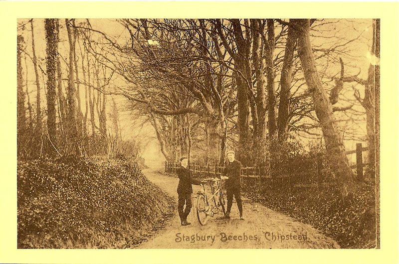 Cyclists in Stagbury Beeches, now Hazlewood Lane, circa 1910